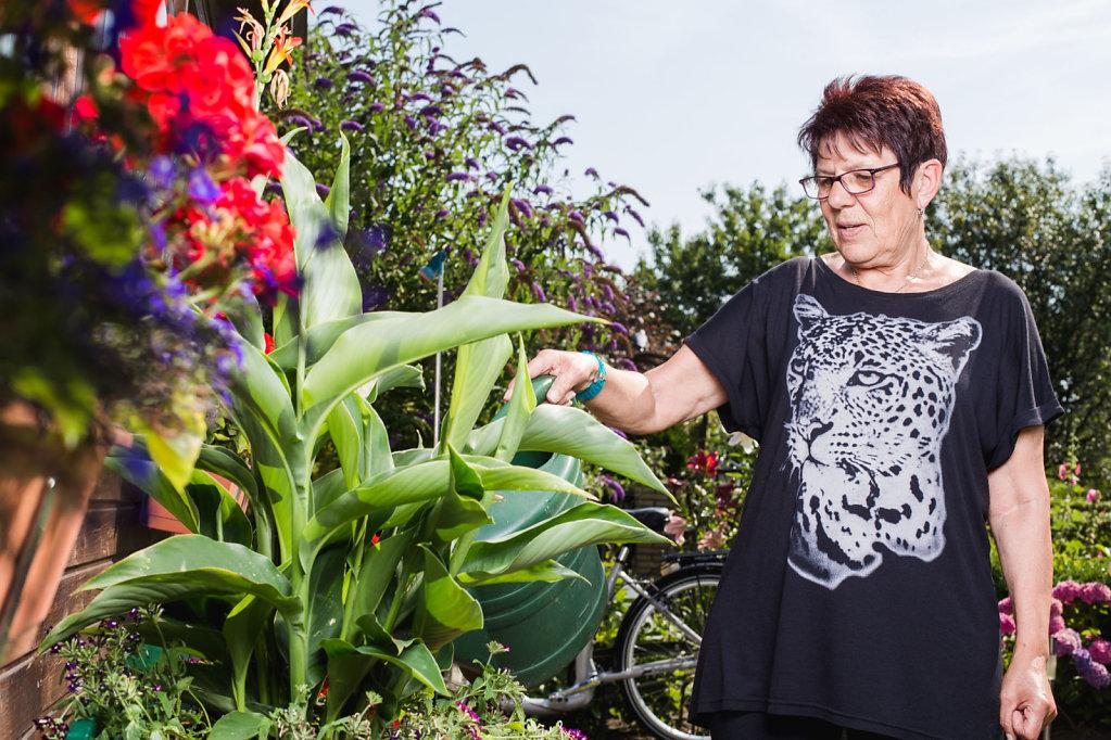 freies Projekt: die Gartenzwerg-Vereinigung